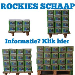 Informatie Rockies Schaap actie